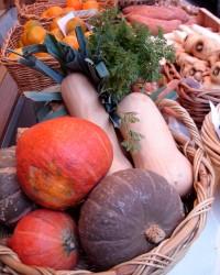 legumes automne