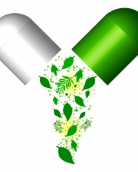Green Capsule- Herbal Medical Concept