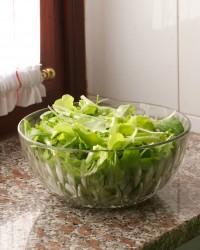 insalata di rucola